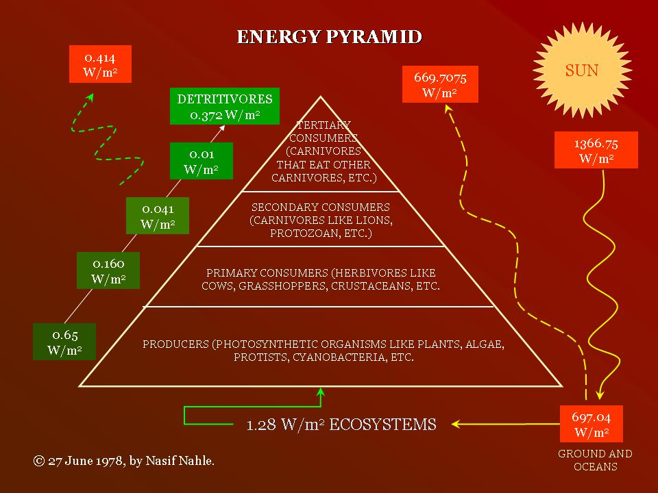Energy pyramid BioSuperfood