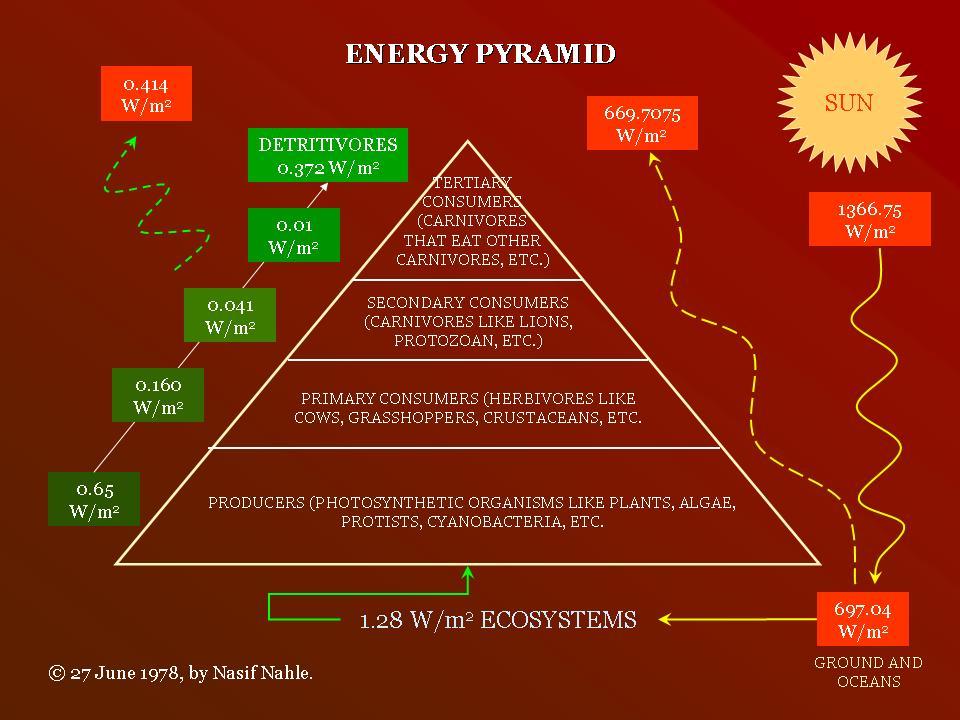 Energy pyramid BioSuperfood