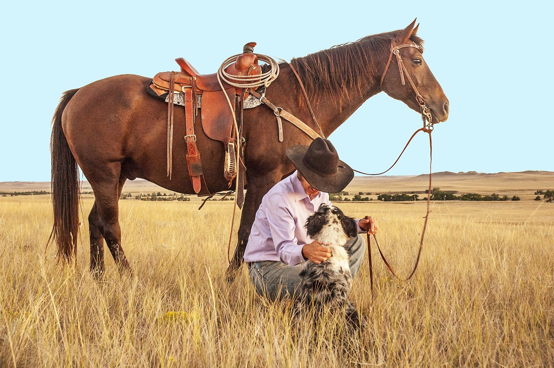 BioPreparation horse dog cowboy