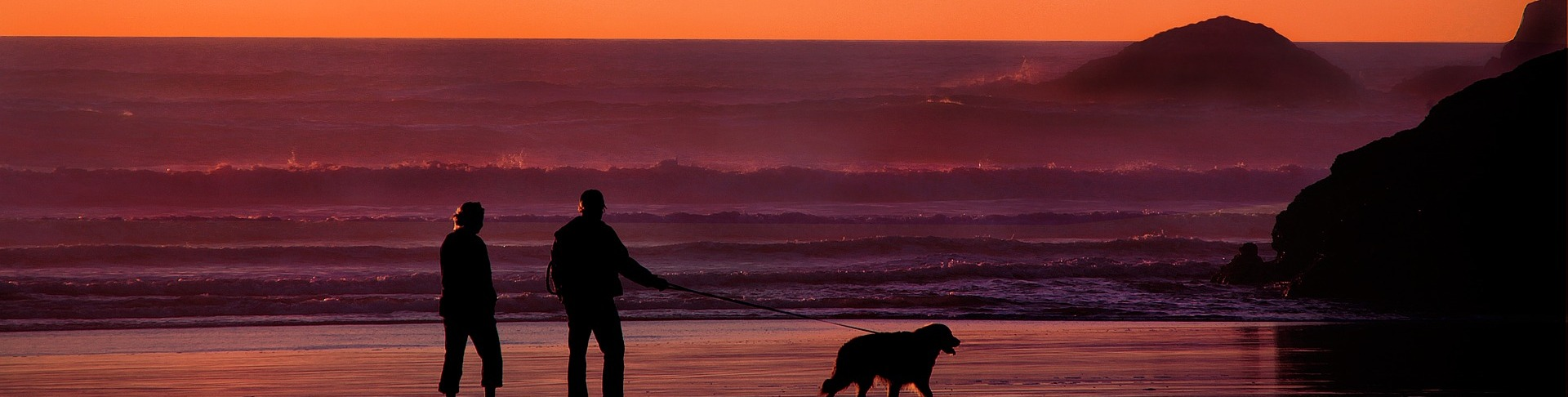 Grandparents walking dog on beach - BioSuperfood supports healthy aging and longevity