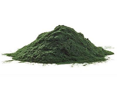 Spirulina Platensis Powder
